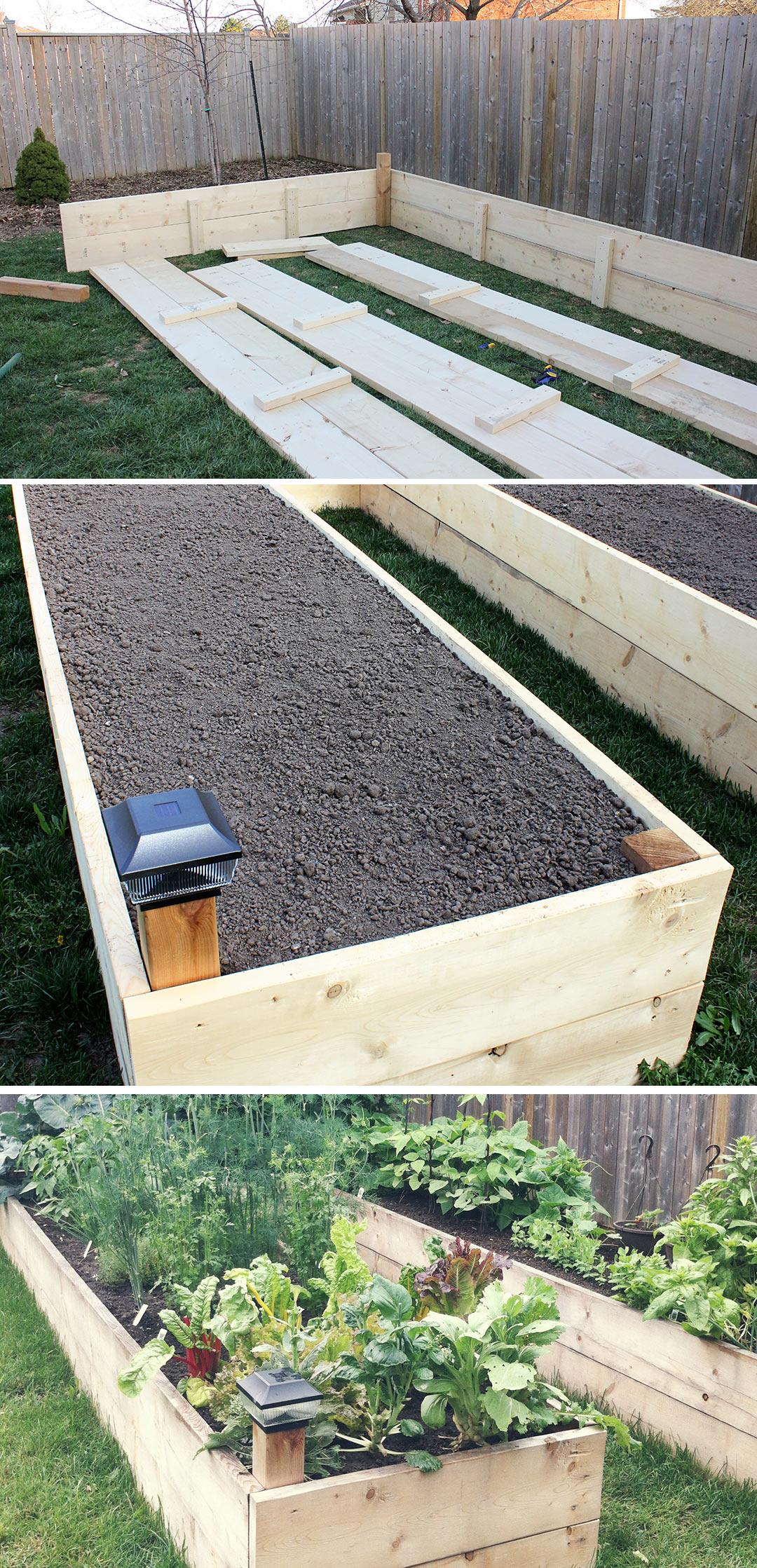 Backyard-Raised-Garden-beds