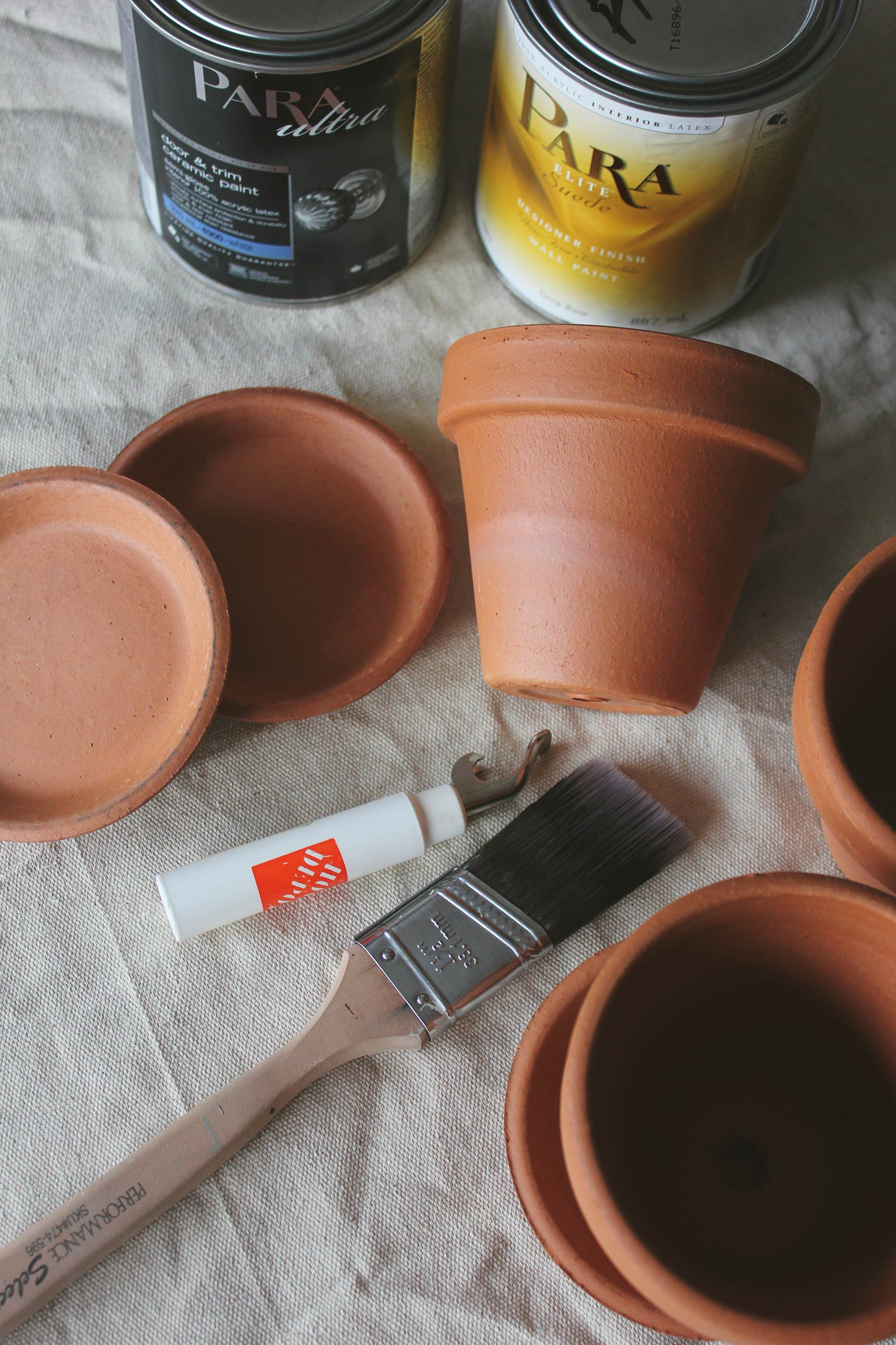 DIY Clay Pots Plants Brittany Stager