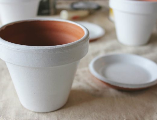 DIY Clay Pots + Plants