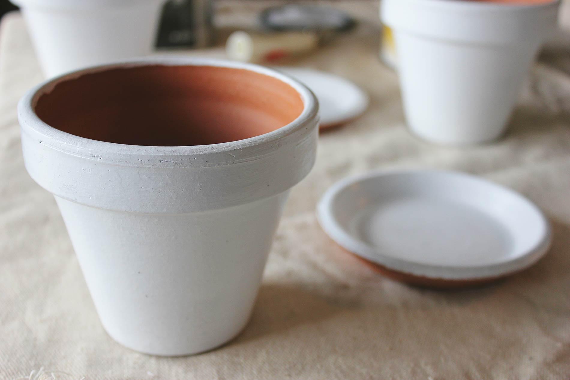 DIY Clay Pots + Plants