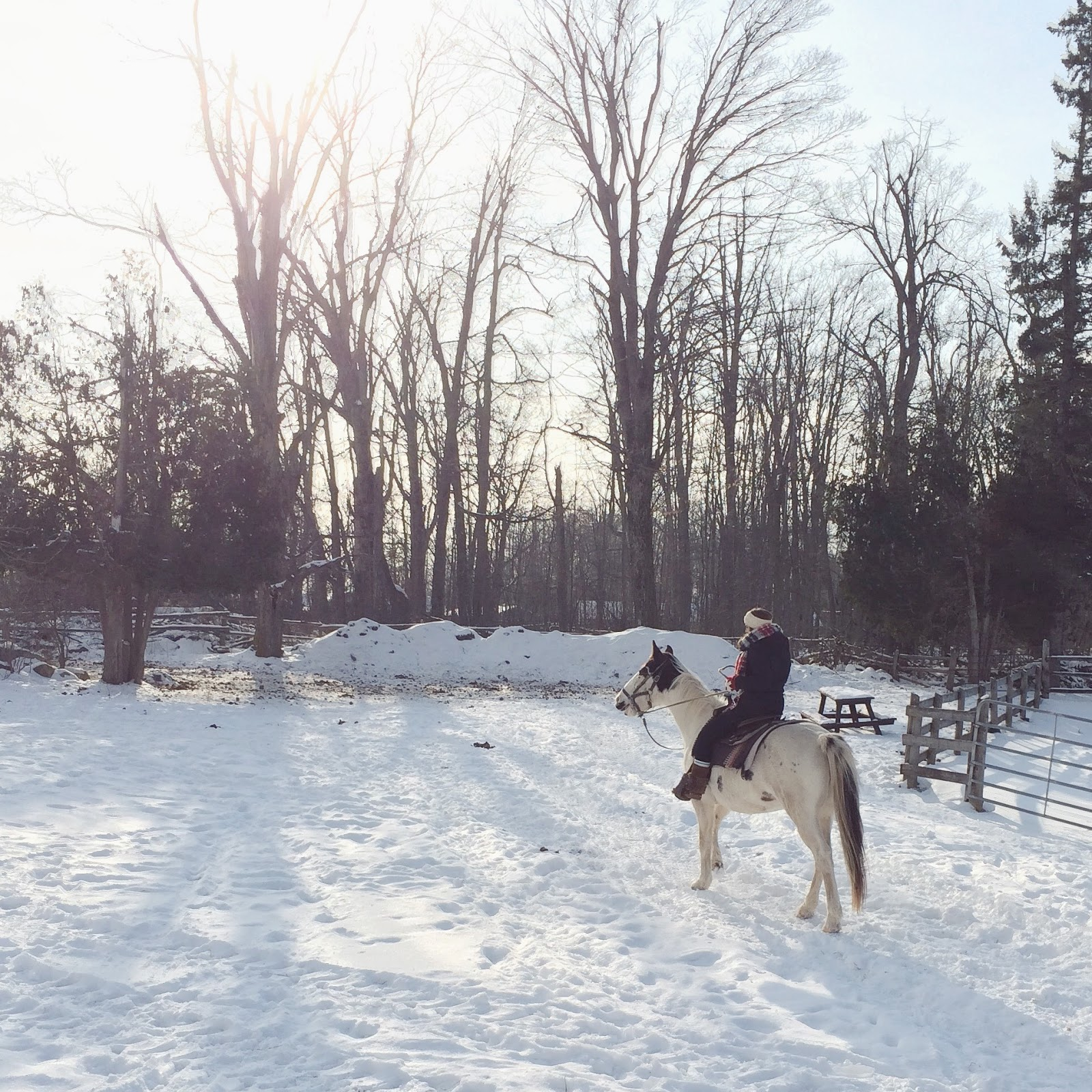 Winter-Horseback-Riding