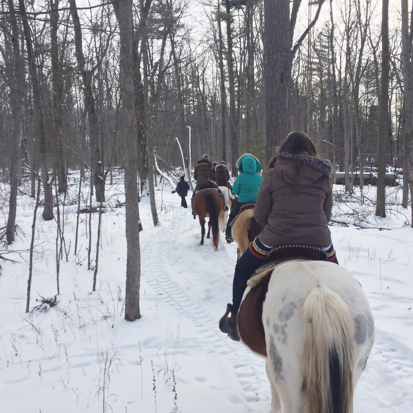 Winter-Horseback-Trail-Ride