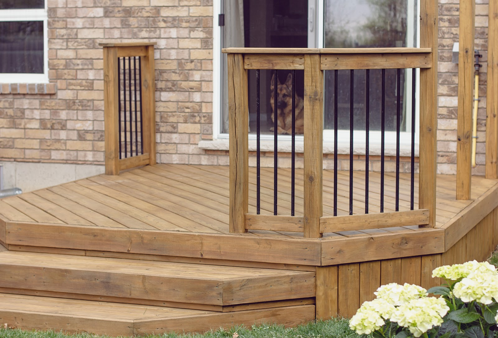 Finished-Stained-Deck