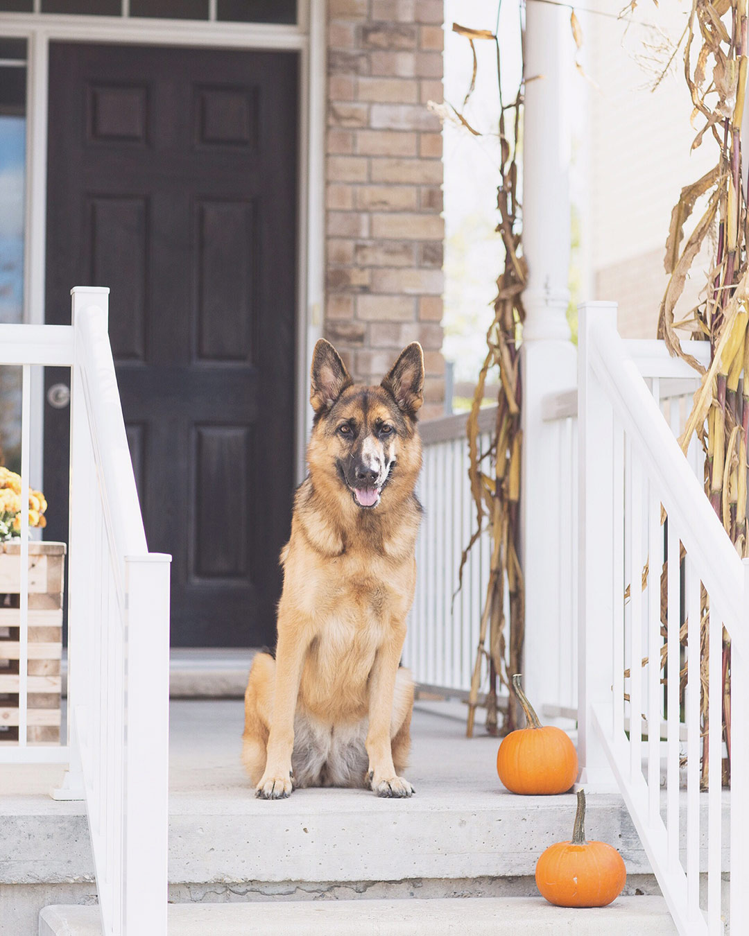 Front-Porch-Fall-Decor