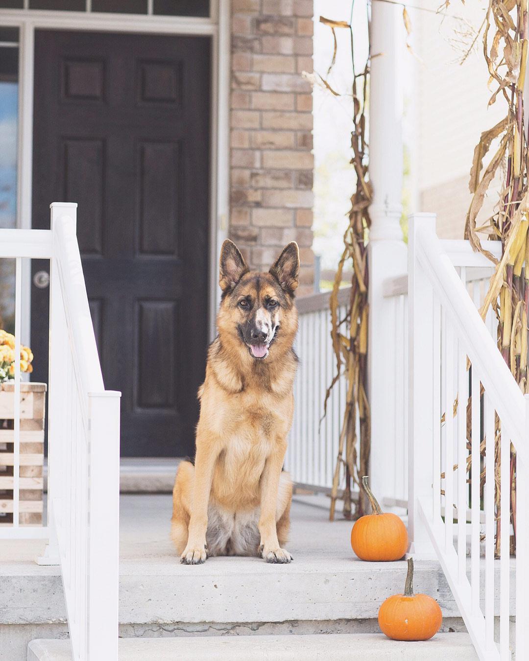 Front-Porch-Fall-Decor