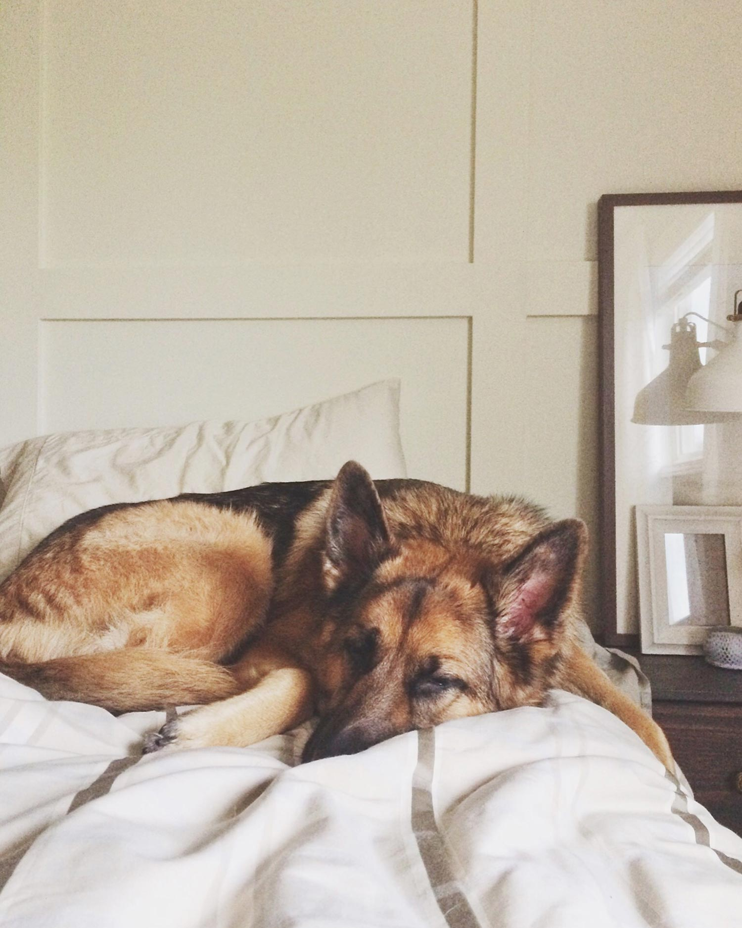 Maddy-Sleeping-Long-Weekend
