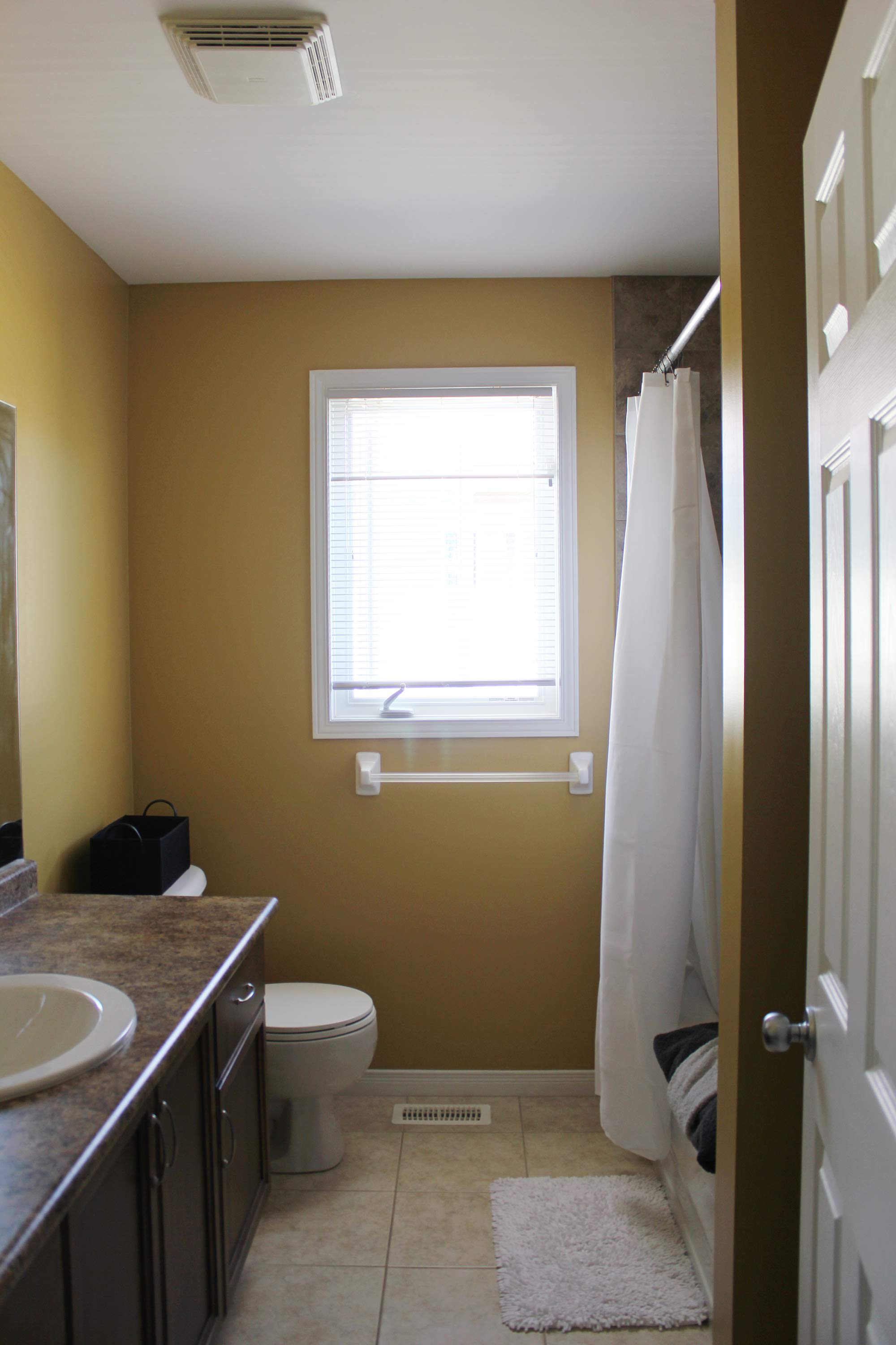 main-bathroom-before-refresh