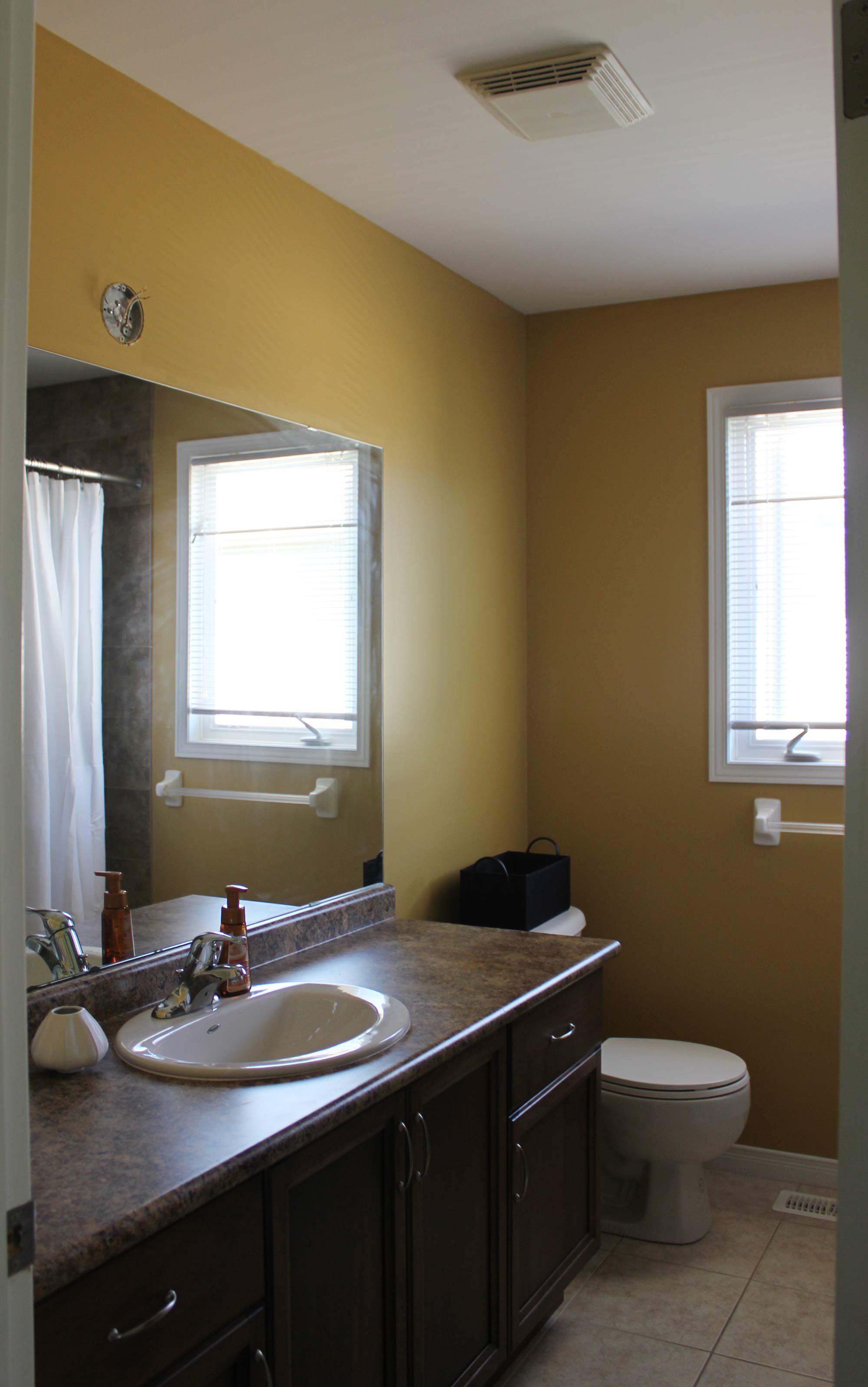 main-bathroom-refresh-before